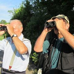 Bruno Roth und DIetmar Sellner suchen die Rohrweihe