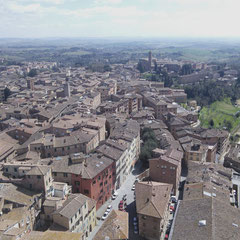 View from the Torre del Mangia