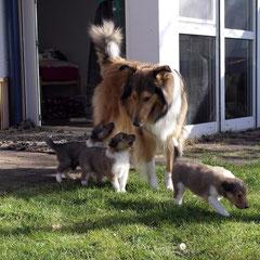 Bootsie ließ sich wie immer nicht nehmen, ihre kleinen Geschwister zu begleiten <3
