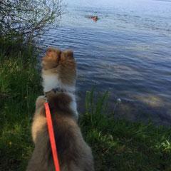 Schwimmunterricht steht auf dem Programm!