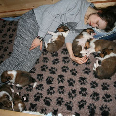 Lou schläft bei den Zwergen ;)