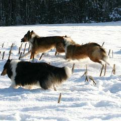 Alle lieben Schnee :)