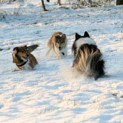 Auch unser Klärchen hat Spaß mit dem Schnee und dem Jungvolk!