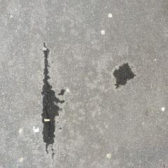 Walter Wendemann unterhält sich mit einem im Wind wehenden Plastiksack.