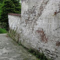 Mur de clôture depuis la fenêtre du studio -1