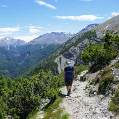 Nach einigen Serpentinen erreicht man die Baumgrenze und geniesst einen wunderbaren Panoramablick.