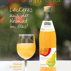 Produkt-Promotion Fruchtsaft Plakat