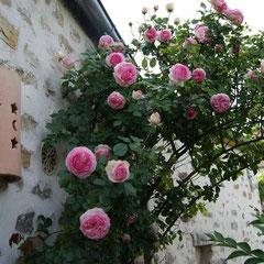 gite senlis chantilly crepy pierrefonds parc asterix paris proche aeroport roissy et parc des expositions de villepinte oise picardie grand jardin