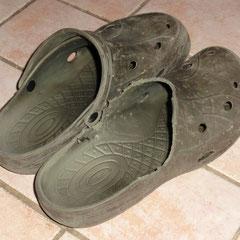 Herrchens Schuhe