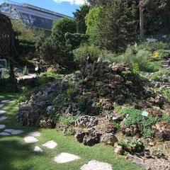 Jardin des Plantes, 75014