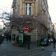 Springtime rue d'Argout
