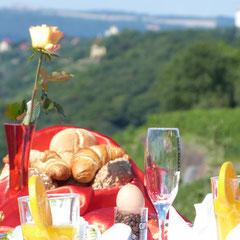 Blick vom Bismarckturm in Richtung Meißen