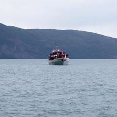 3-4 Boote begleiten uns auf der Gletschertour.