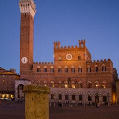 Siena, Campo