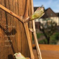 "Postkarte ""Hoffnung"" DIN A6"