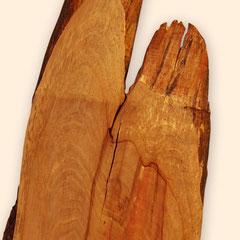 Detail obere Naturkante der Baumscheibe