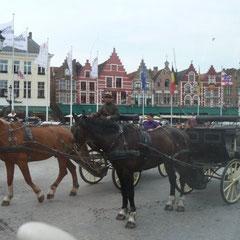 Die Pferdekutschen vor den alten Patrizierhäusern warten auf Kundschaft, aber eine Bootsfahrt ist dem vorzuziehen.