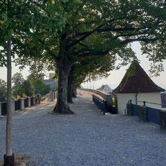 Rapperswil-Jona Schlossgarten