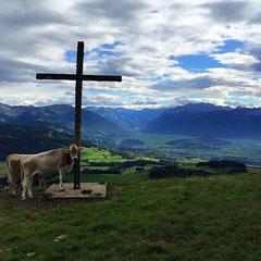 Sicht vom Atzmännig in die Region ZürichseeLinth