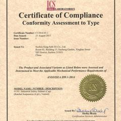 Industrial Safety Helmet ANSI/ISEA Z89.1-2014 Model #110