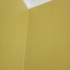 toile intissée à peindre et mur enduit