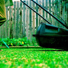 Mowing lawns and keeping plants pruned will help a property present well.