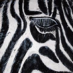 Zebra 2/6, 32,5x32,5cm, Acryl auf Holz, 2013