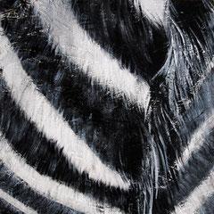 Zebra 3/6, 32,5x32,5cm, Acryl auf Holz, 2013