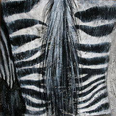 Zebra 4/6, 32,5x32,5cm, Acryl auf Holz, 2013