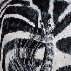 Zebra 1/6, 32,5x32,5cm, Acryl auf Holz, 2013