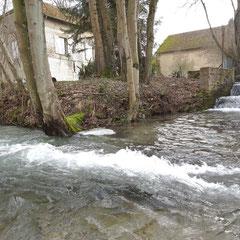 Le moulin alimenté par le Moncet et la Conge (entre St Masmes et Epoye)