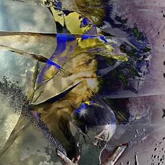 """""""Steinblüte""""   2013, digitale Kombination aus Acrylwerk und Fotografien"""