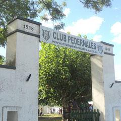 Atletico Pedernales - Pedernales - Bs.As