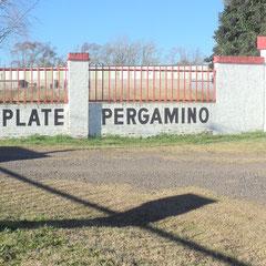 At River Plate - Pergamino - Bs.As