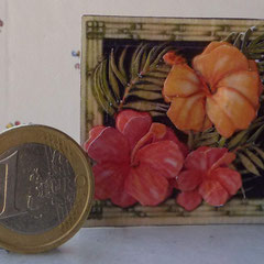 Flores de Ibiscus. 3 láminas 10€
