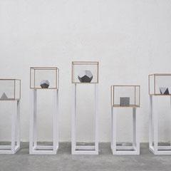 Marco La Rosa Il migliore dei mondi possibili 2012 legno, vetro, plexiglas e piombo sabbiato 5 teche (45x45 cm cad. con altezza massima di 157 cm) dimensioni ambientali