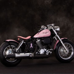 Shadow Ace 750 with Bobber Kit