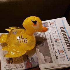 Tanjas Ente beim Zeitung lesen