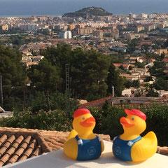 Zwei HTG Enten wurden an der Ostküste Spaniens in Denia gesichtet!