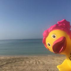 Claudias Ente am Strand auf Mallorca