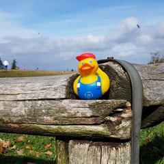 Eine HTG Ente im schönen Taunus auf der Spitze des Feldbergs.