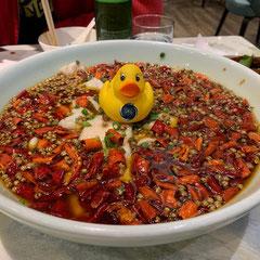 Eine Ente in der Suppe, sozusagen unser HTG Suppenhuhn!
