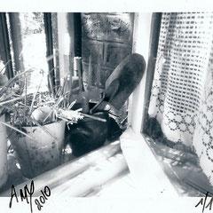 """Série : """"Sur le rebord de ma fenêtre"""", 01_printemps_2010 _ © Annick Maroussy 1/1"""