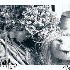 "Série : ""Au Jardin"", 01_printemps_2010 _ © Annick Maroussy 1/1"