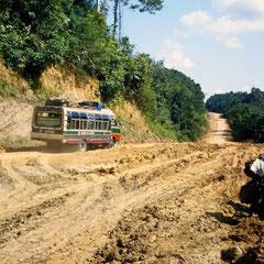 Indonésie. Sur les pistes de Sumatra