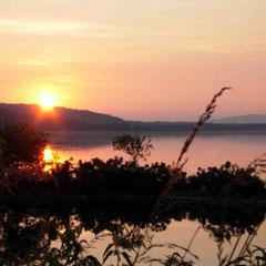 Au bord du Danube