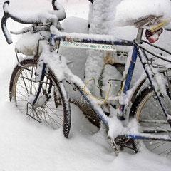 Canada. Première chute de neige vers Calgary