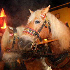 Horse- drawn sleigh rides at Salzburg Mountain Advent in Grossarl