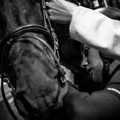 932.316 Fiera Cavalli Verona © 2019 Alessandro Tintori