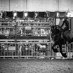 932.500 Fiera Cavalli Verona © 2019 Alessandro Tintori